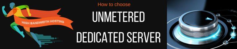 Unmetered Dedicated Server